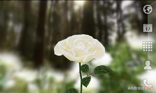 3D Rose Live Wallpaper