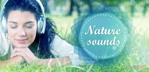 Nature relax sounds: Birds